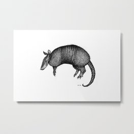 Isolated Armadillo Metal Print