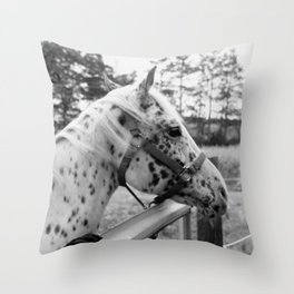 Black & White Horse Throw Pillow