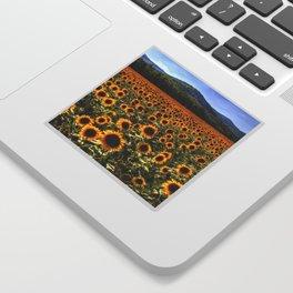 Sunflower Fields Of Dreams Sticker