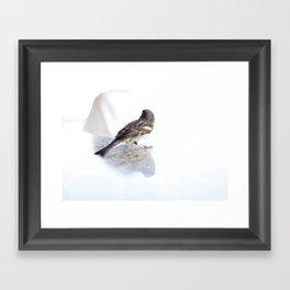 Perched.  Framed Art Print