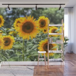 Sunflowers Summer Days Wall Mural