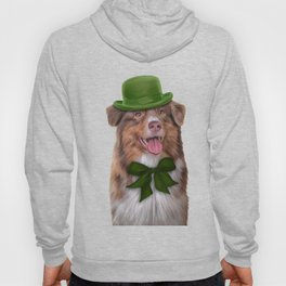 Dog breed Australian Shepherd, Aussie Hoody