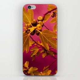 Fig No.3 iPhone Skin