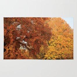 Beautiful Trees in Hyde Park, London, UK Rug
