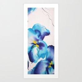 Blue Iris Chiffon in White & Blue Art Print