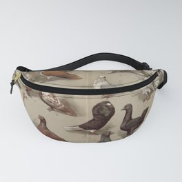 Vintage Pigeon Breeds Chart Fanny Pack