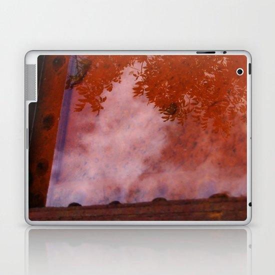 Reflection Pool Laptop & iPad Skin