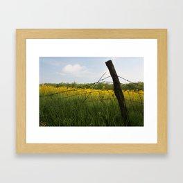 fence row Framed Art Print