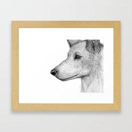 She Wolf Framed Art Print
