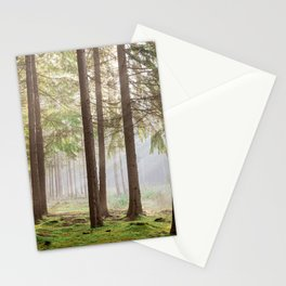 Light in the forest - North Kessock, Highlands, Scotland Stationery Cards