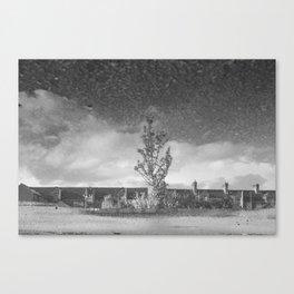 Tree Stormy Sky Canvas Print