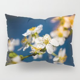 Beautiful White Jasmine Flowers With Green Leaves Against A Blue Background Pillow Sham
