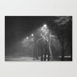 Hushed Canvas Print