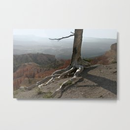 Tree on a Ridge in Bryce Canyon Metal Print