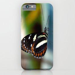 Doris Longwing Butterfly-2 iPhone Case