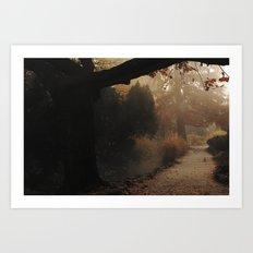 Natural mystique Art Print