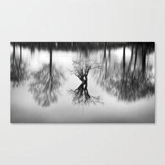 Rhizomes Canvas Print