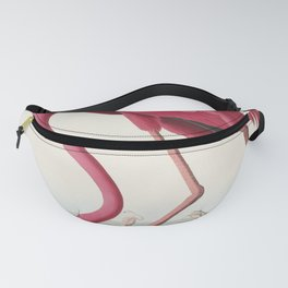 Pink Flamingo from Birds of America (1827) by John James Audubon (1785 - 1851 ), etched by Robert Havell (1793 - 1878) Fanny Pack