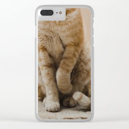 Coquettish Cat in Israel Clear iPhone Case
