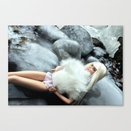 Winter Barb Canvas Print
