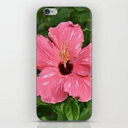 Hibiscus iPhone Skin