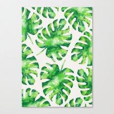 Monstera Leaves Canvas Print