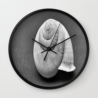 shell Wall Clocks featuring Shell by Abigail Burgett