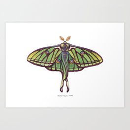 Spanish Moon Moth (Graellsia isabellae) Art Print