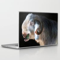 ram Laptop & iPad Skins featuring Ram by Veronika