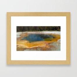 Unexpected Beauty Framed Art Print