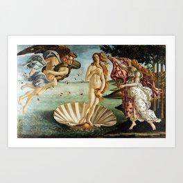 Iconic Sandro Botticelli The Birth of Venus Art Print