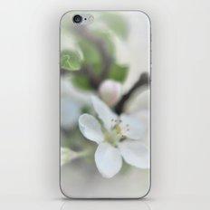 Apple Pie Dreams iPhone & iPod Skin
