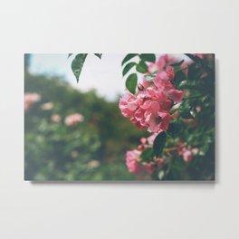 Flower XVIII Metal Print