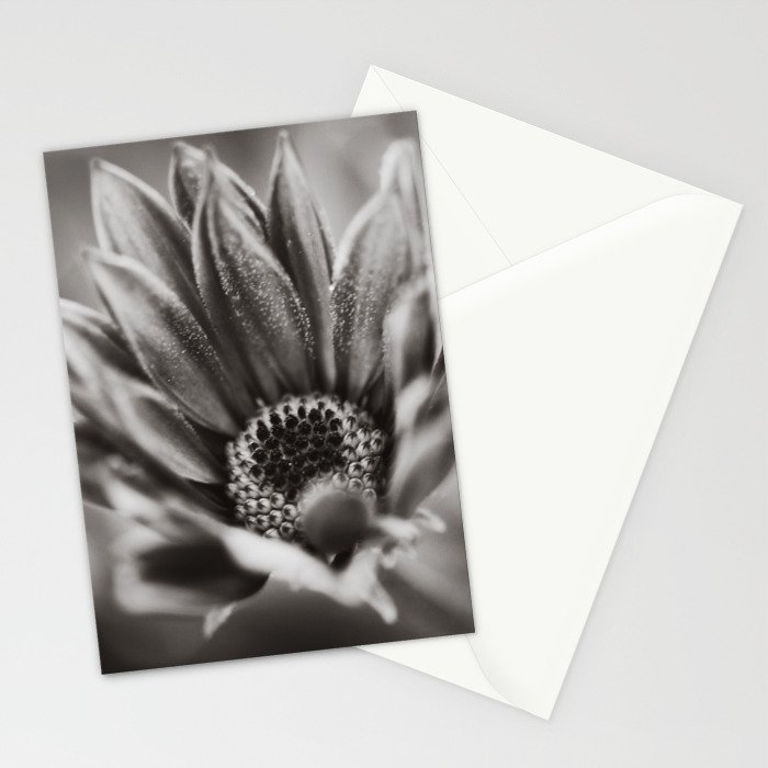 Flower in Black and White Stationery Cards