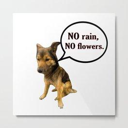 No rain No Flowers - Funny Dog Memes Metal Print