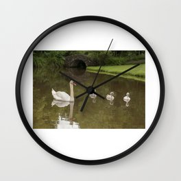 Swans day out Wall Clock