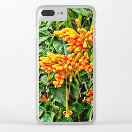 Spectacular orange trumpet flower Clear iPhone Case