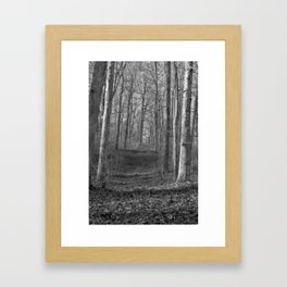 Path To No Where Framed Art Print