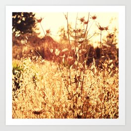 The Golden Hour Art Print