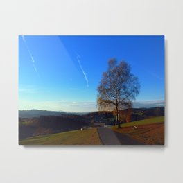 Tree, road and indian summer evening | landscape photography Metal Print