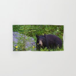 Black bear munches on some dandelions in Jasper National Park Hand & Bath Towel