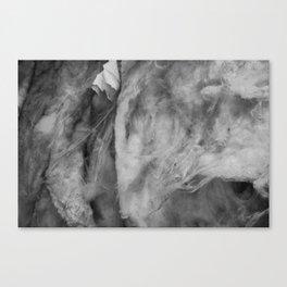 Inside Insulation Canvas Print