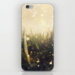 Hidden in the Magic Garden iPhone Skin