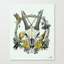 PentaSkull (Teal) Canvas Print