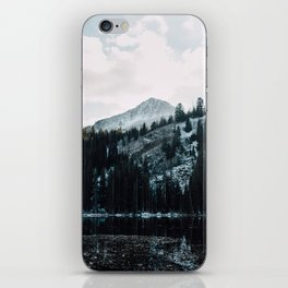 Wasatch Mountains In The Snow iPhone Skin
