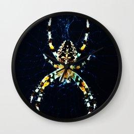 European Garden Spider Wall Clock