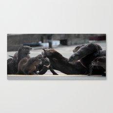 Otter Fight Canvas Print