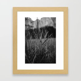 Yosemite Valley III Framed Art Print
