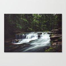 Szklarka creek Canvas Print