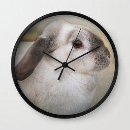 Born to be wild? Wall Clock